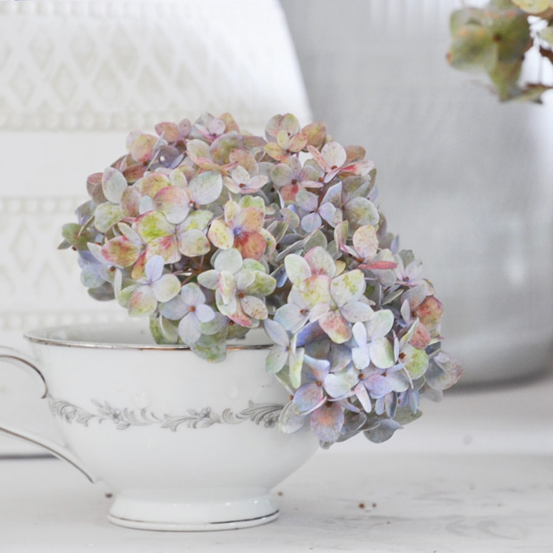 valentine's day ideas,hydrangea in vintage tea cup soft pastel color flowers french country style home decor