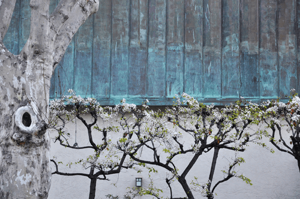 van gogh one art print | blue and neutral photography | printable wall decor