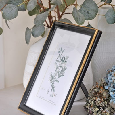 vintage botanicals olive leaves print in black and gold old frame