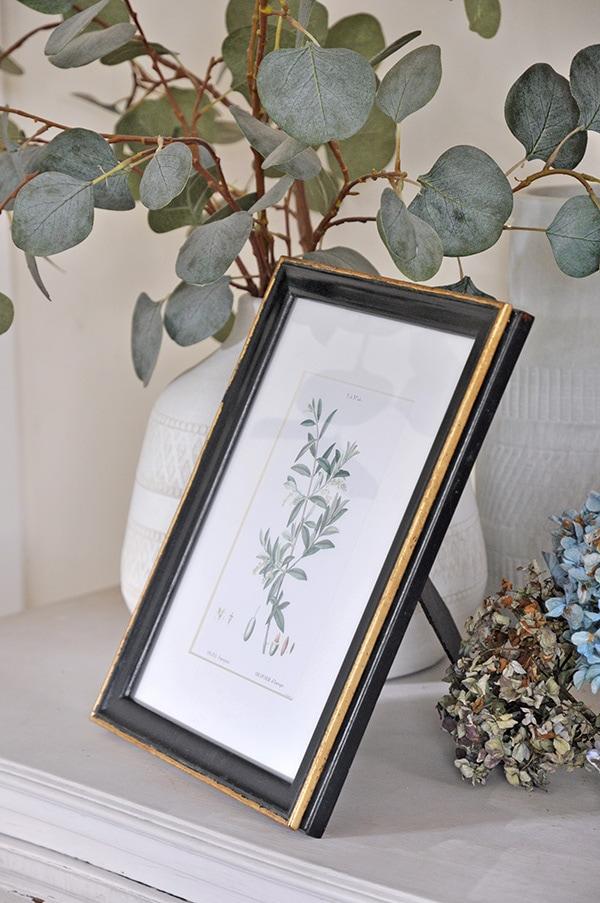 vintage botanicals olive leaves print in black and gold old frame