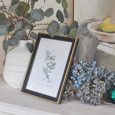 thrift store picture frame makeover with vintage olive branch botanical art free printable wall art