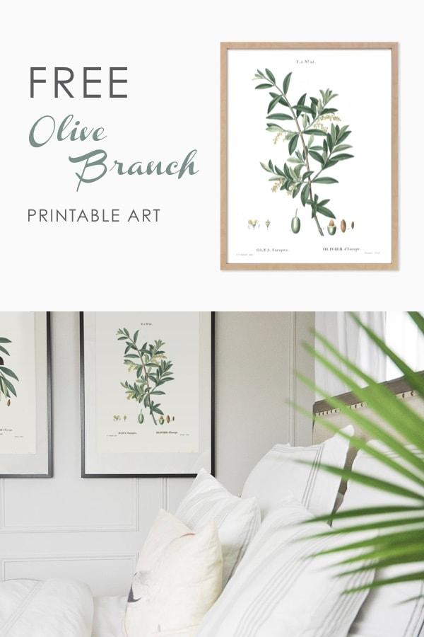 free printable wall art, olive branch vintage botanicals, art print, free downloadable art