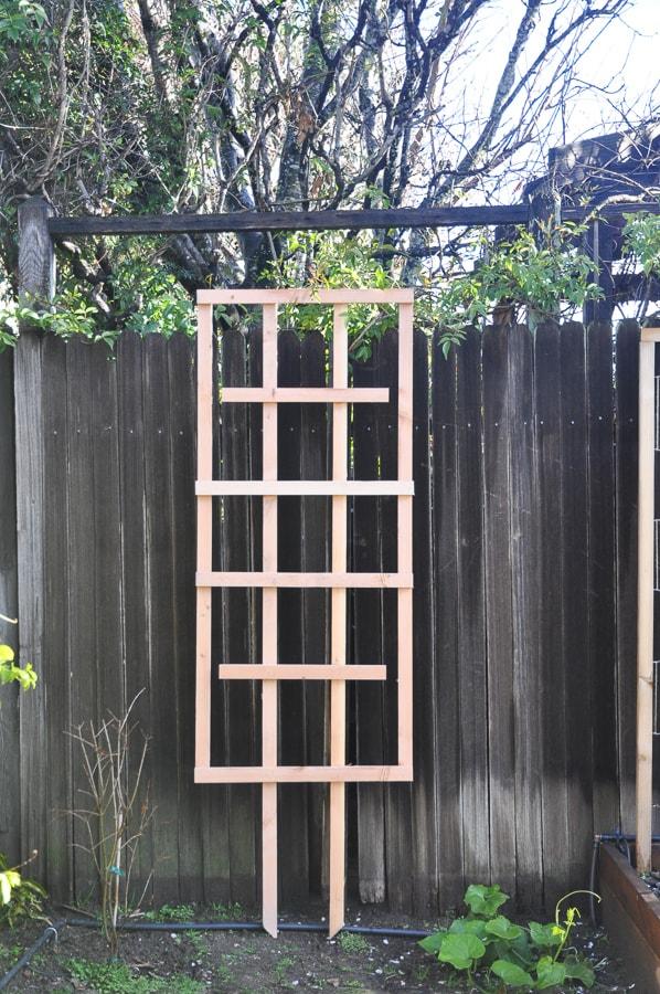 diy garden trellis for less than $5 | garden diy project