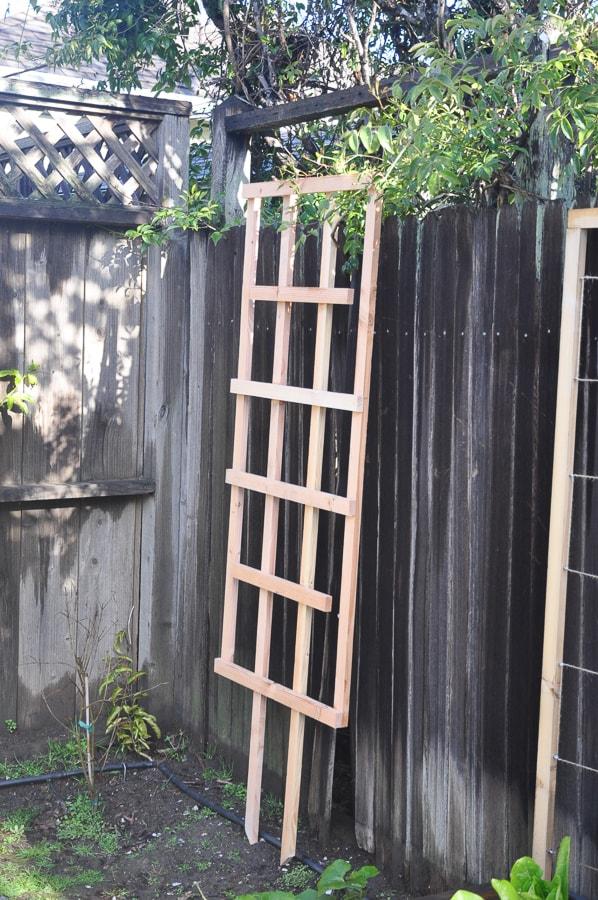 diy garden trellis for less than $5 | garden diy lattice project