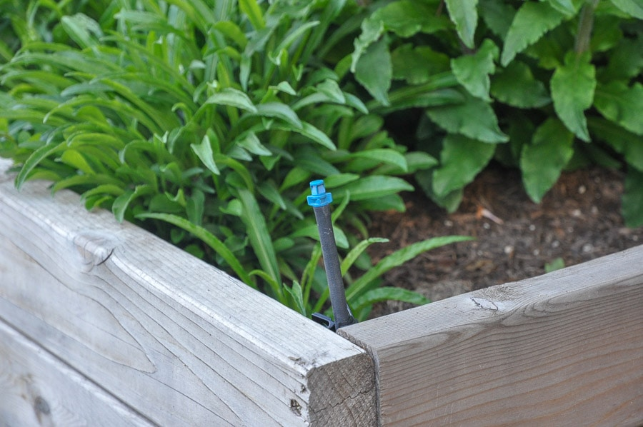 drip irrigation for raised beds in your garden