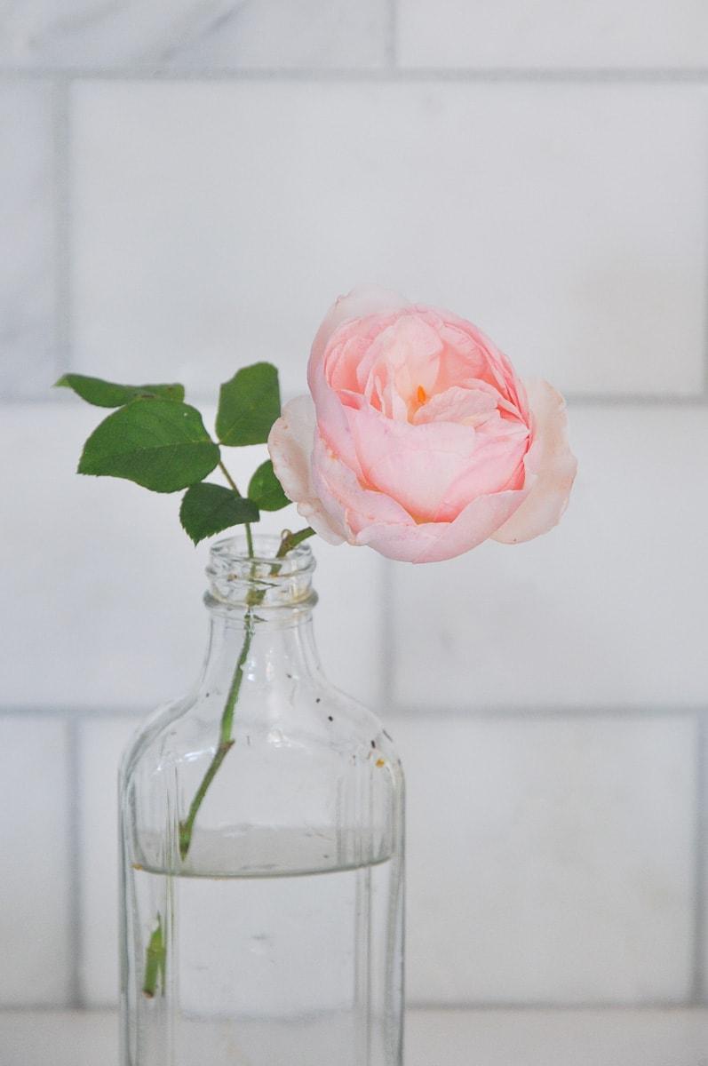 spring summer cutting flower garden, free bouquet flower from backyard heritage rose