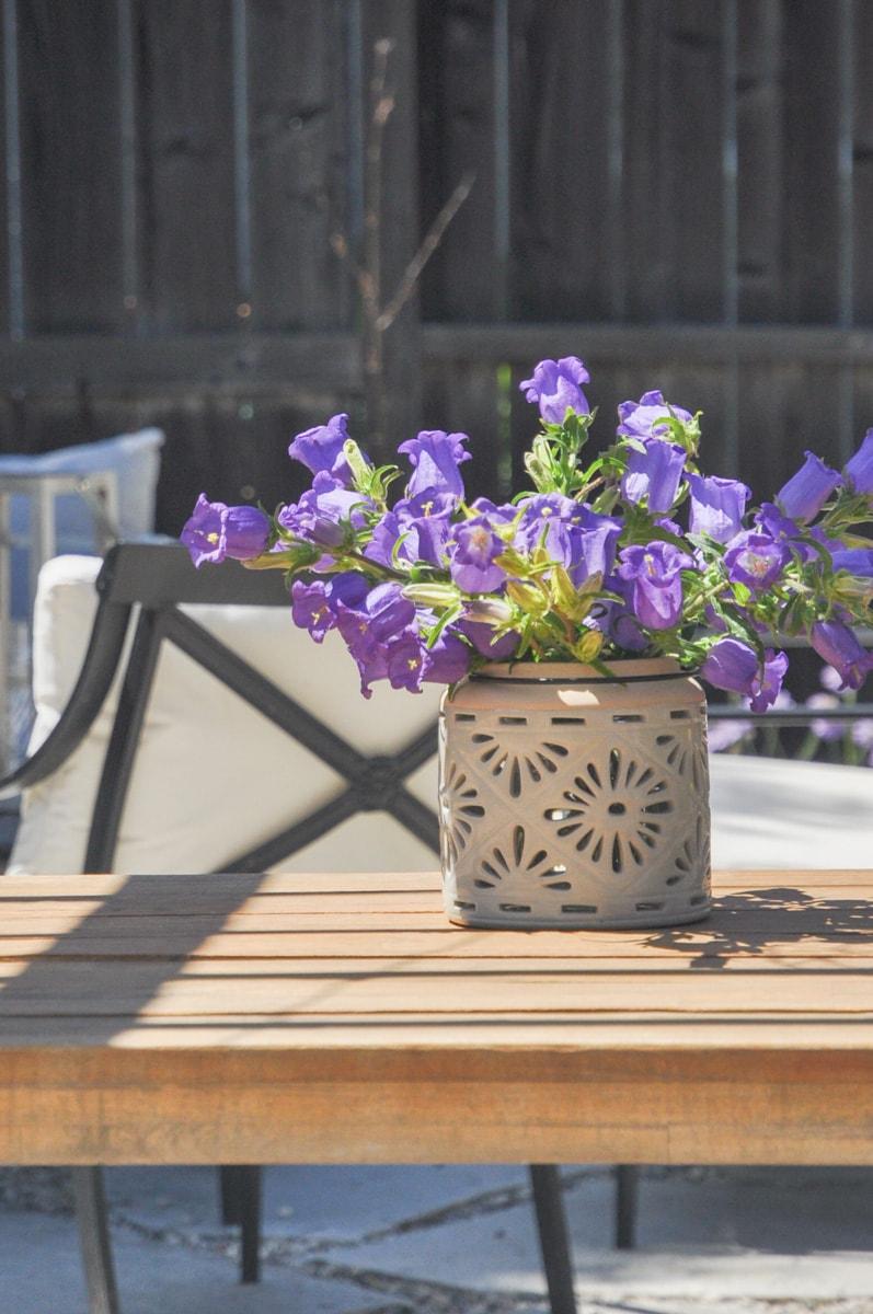 spring summer cutting flower garden, free bouquet flower from backyard