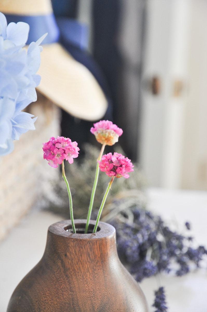 spring summer cutting flower garden, free bouquet flower from backyard sea pink