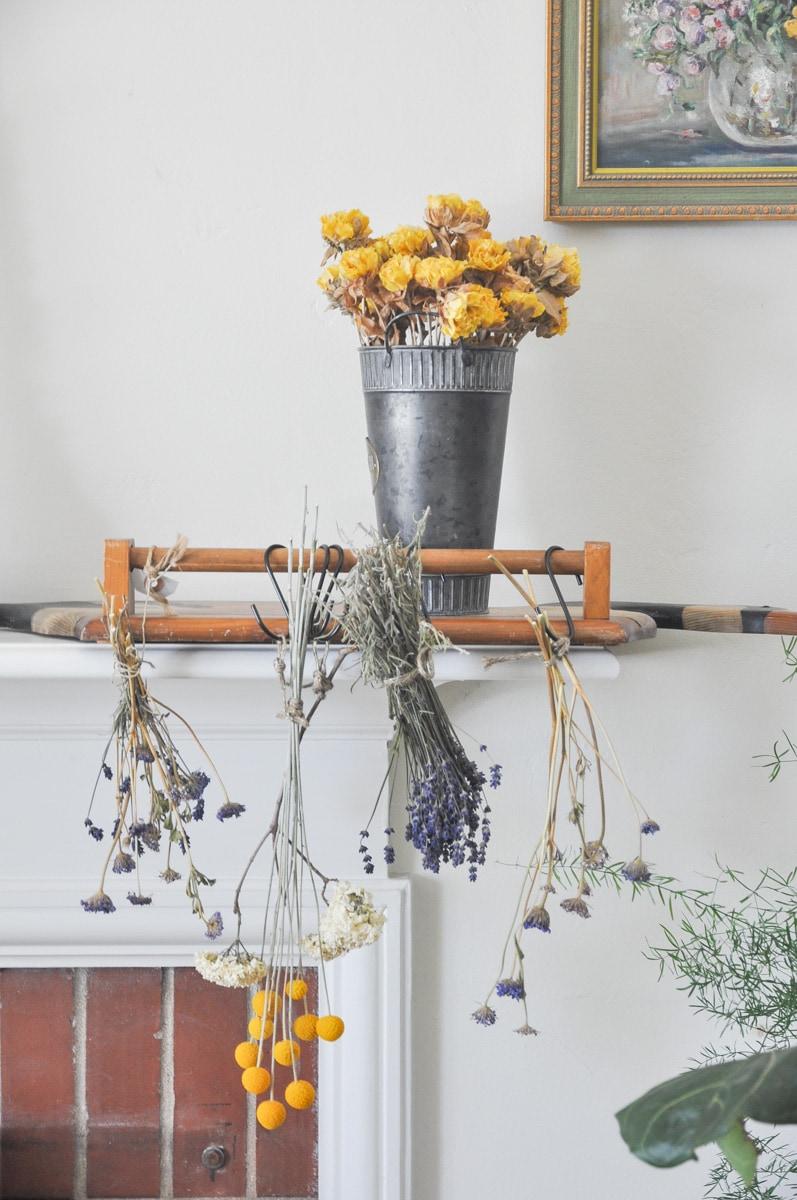 spring summer cutting flower garden, free bouquet flower from backyard dried flowers, lavender didiscus billy ball vibranium