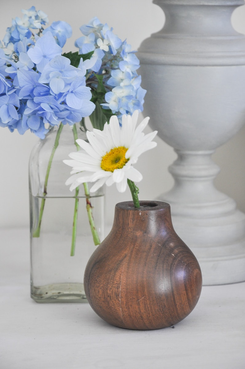 spring summer cutting flower garden, free bouquet flower from backyard shasta daisy