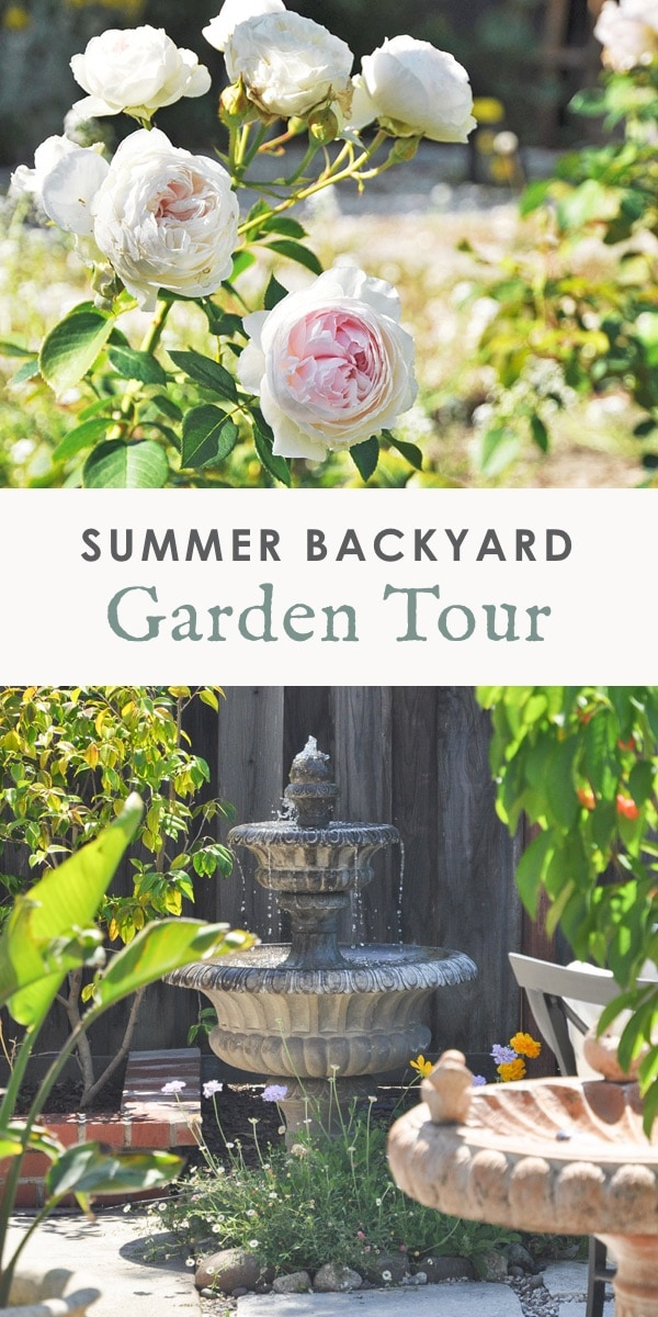 2019 summer garden tour, california landscaping ideas, zone 10, northern california gardening