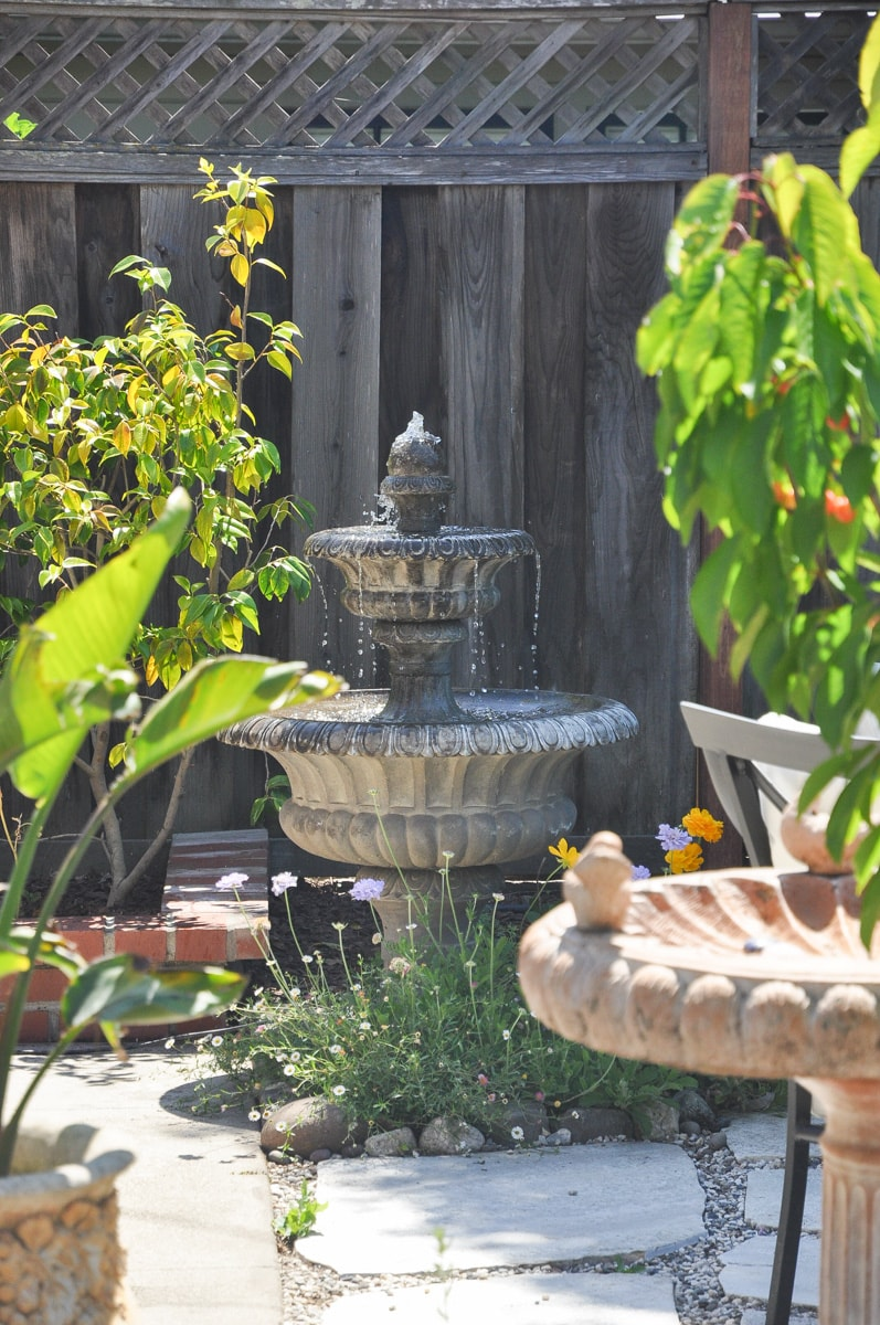 outdoor fountain, bird of paradise, spring summer tour