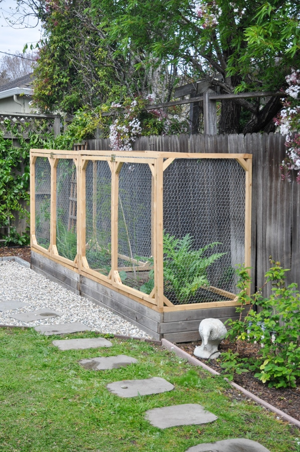 DIY raised garden bed with fence