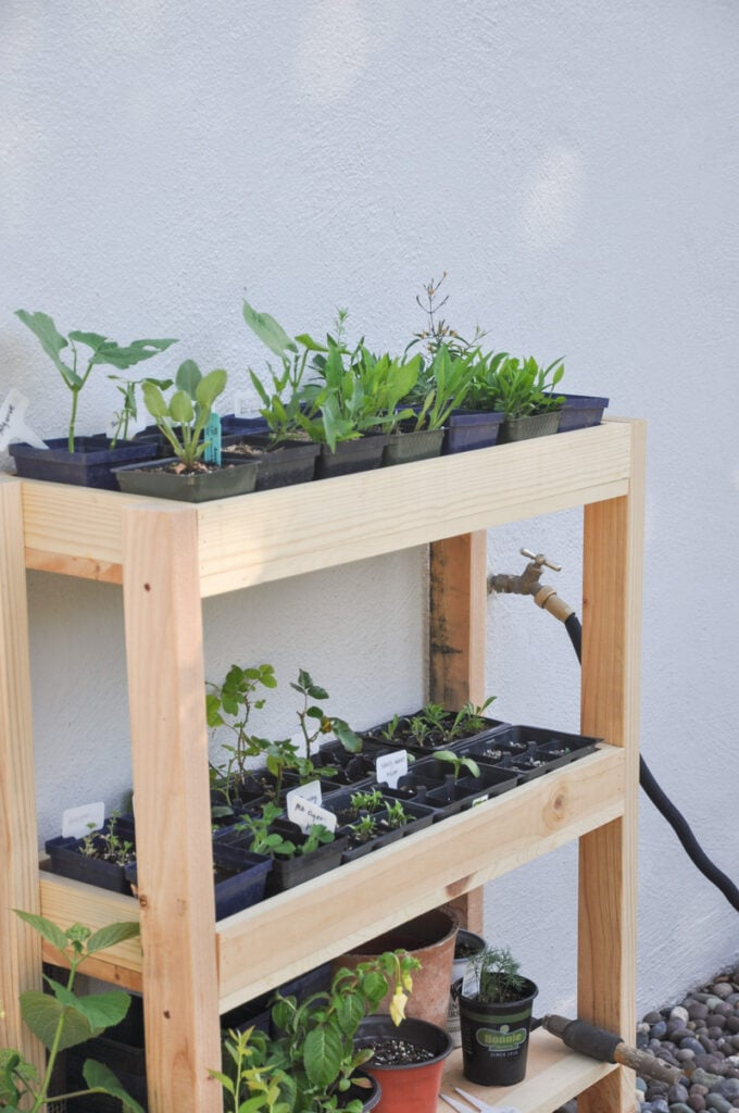 DIY outdoor plant shelf to keep your plants organized