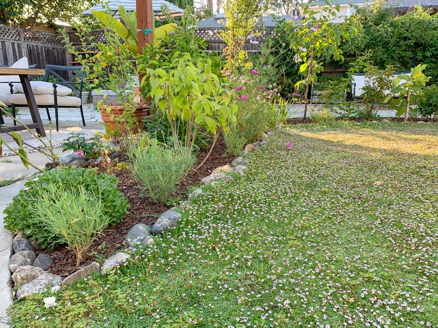 convert grass lawn to flower garden with stone borders