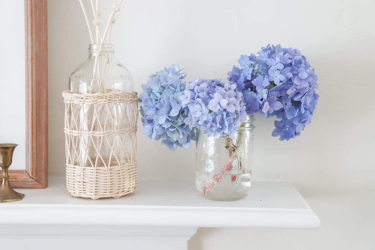 How to dry hydrangeas naturally