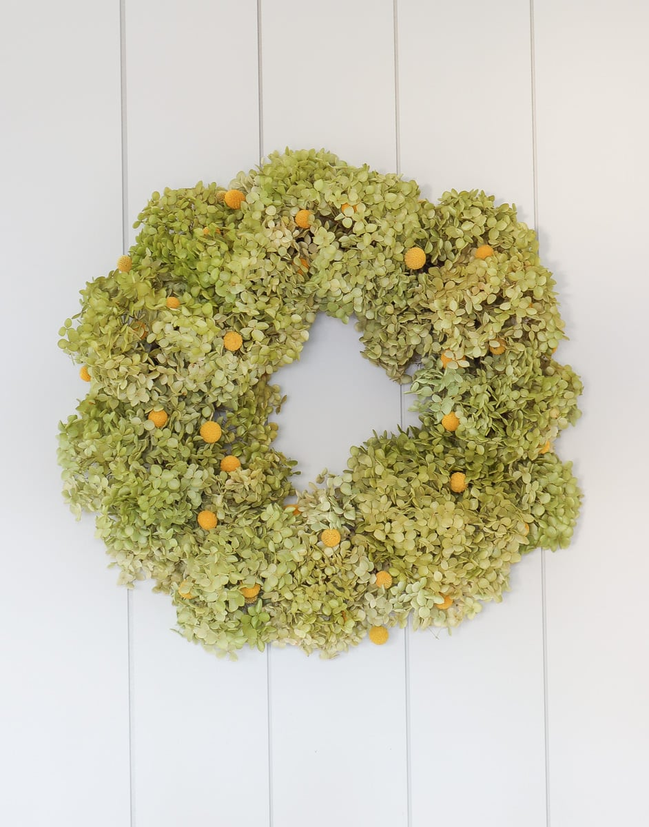 how to make dried annabelle green hydrangea wreath
