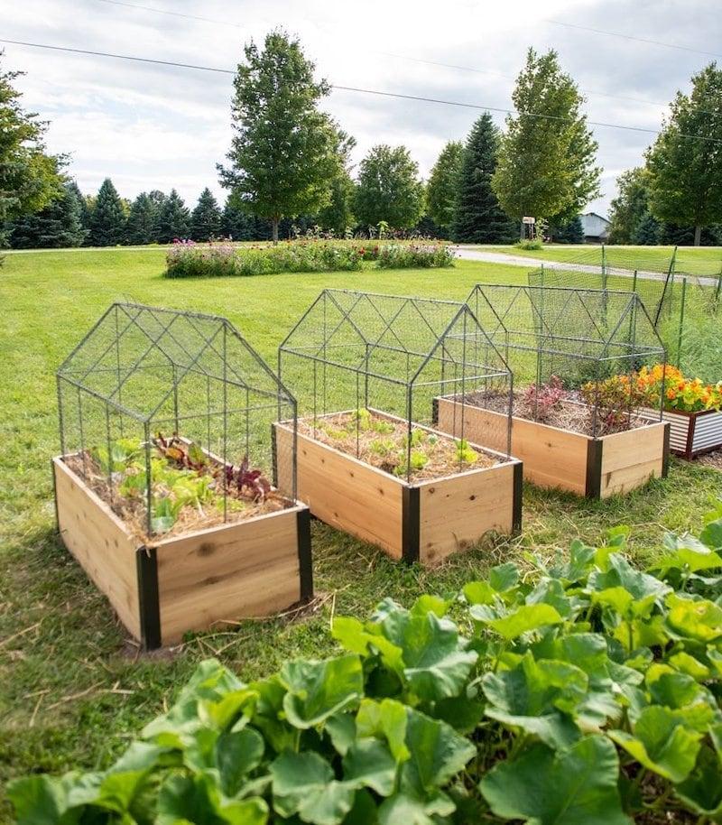 So schützen Sie ein Hochbeet im Garten