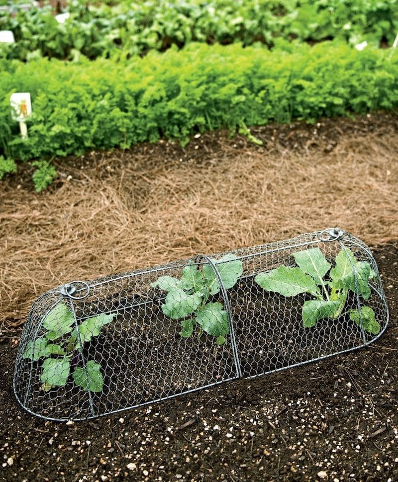 Wie wählt man eine Gartenbettdecke aus?