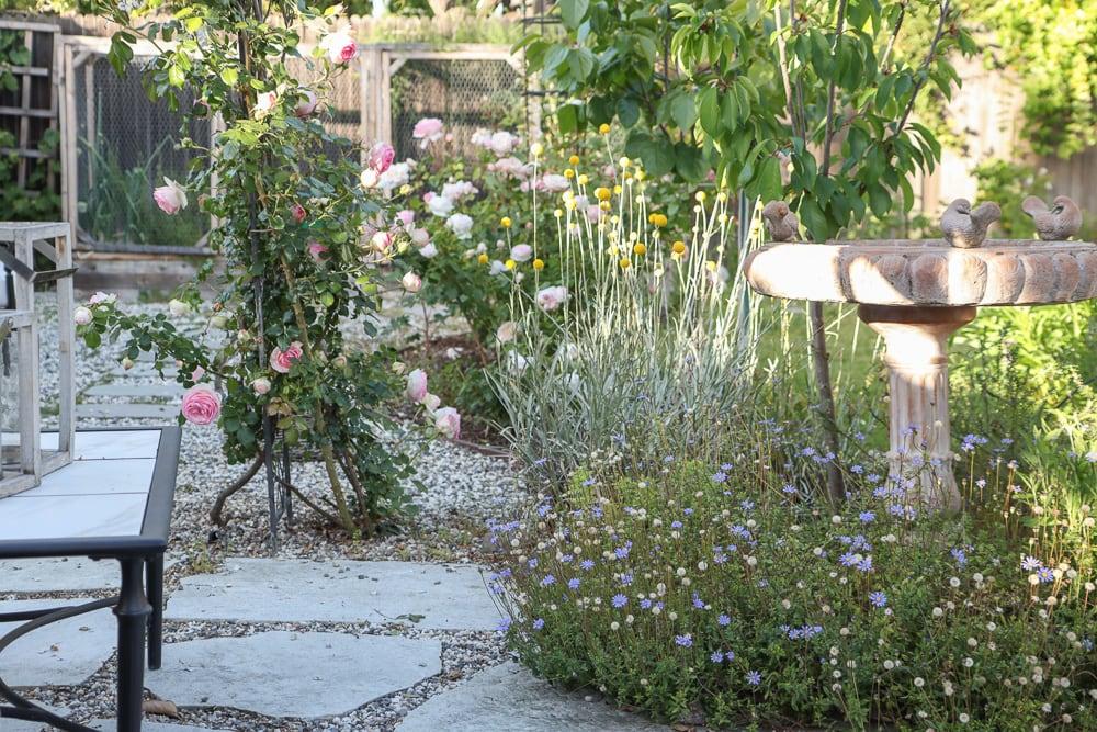kleiner Bauerngarten Rosen Landschaftsbau